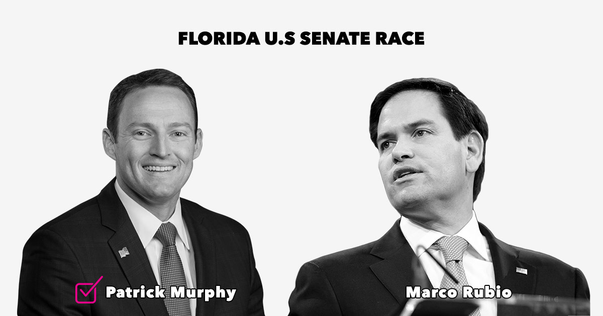 florida-senate-race.jpg