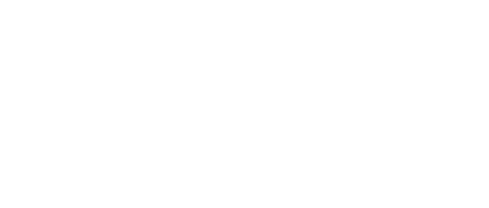 Planned Parenthood Action Fund, Inc.
